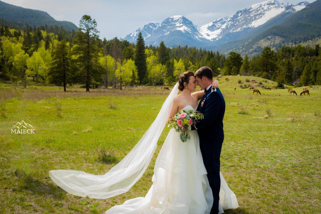 wedding portrait at Rocky Mountain National Park