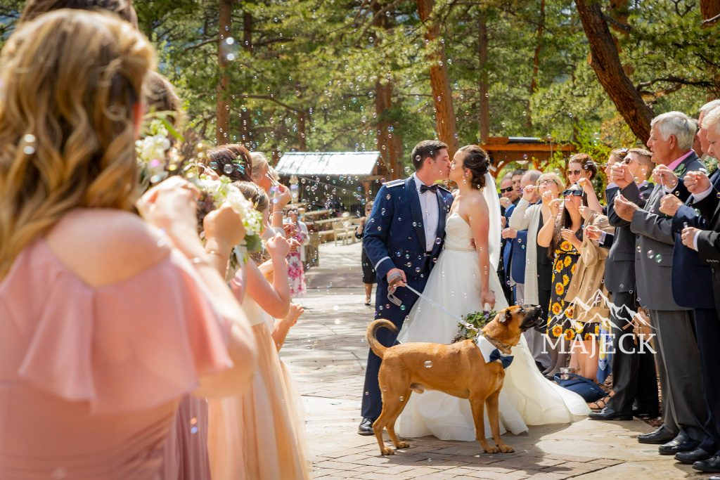 Wedding grand Exit with bubbles and puppy